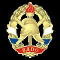 Саратовское отделение ВДПО